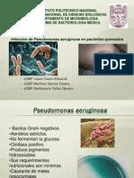Pseudomonas Aeruginosa en Pacientes Quemados Terminado