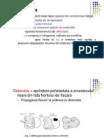 c3-4 Cifra Octanica 2014