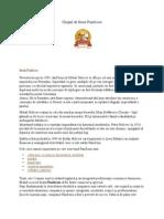 Grupul de Firme Panifcom Proiect Marketing