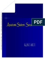 anatomisaraf