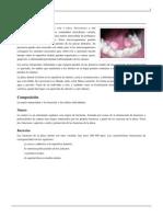 Placa Dental
