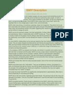 ENFP Description.docx