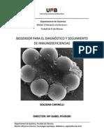 TR_SoledadCarinelli.pdf