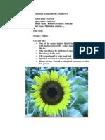 Ordination Seminar Herbs Sunflower