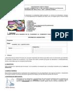 Guía de Informe de Laboratorio