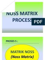 8. Noss Matrix Process(Bahan 9)
