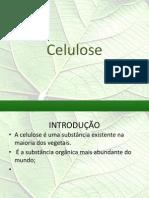 Slide Celulose