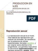 LA REPRODUCCION Sexual y Asexual 1er Cap