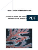 Field Guide to the British Seaweeds