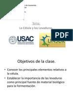 2014_la Celula y Las Levaduras