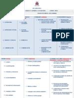 Lengua Castellana Syllabus Guias 11 i