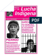 Lucha Indigena 39