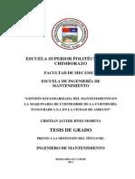 tesis curtiembre (1)