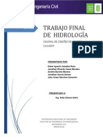 TRABAJO FINAL HIDROLOGIA..docx