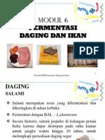 Modul 6. Fermentasi Daging Dan Ikan (2)