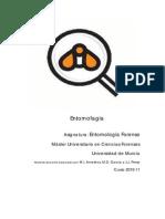 Eentomofagia