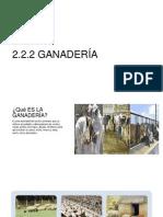 2.2.2 GANADERÍA