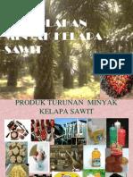 Kelapa Sawit (2)