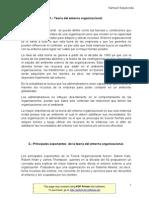 T Entorno Organizacional S2 - Samuel Sepulveda - Jorge T