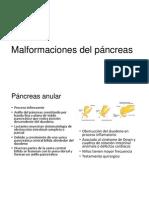 Malformaciones Del Páncreas