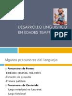 Desarrollo Lingueistico II