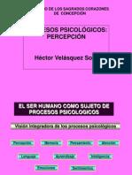 Metaconigcion_percepcion