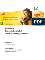 Lipton Report
