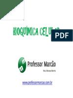 Bioqumica Celular - Composio Quimica Celular - 1 Ano