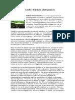 Cultivos Hidroponicos.doc
