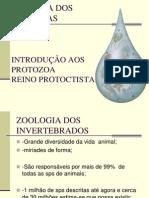 Biologia Dos Protistas