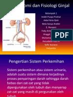 Anatomi Dan Fisiologi Ginjal