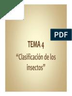 Clasificacion de Insectos