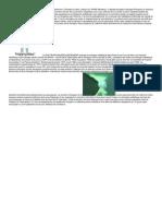 ArticleChirurgien.pdf