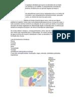 Materia de Geografia Geral