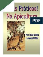 BoasPraticas