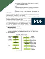 PRACTICA Nº5 Elaboracion de Conservas de Cuy