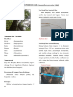 Monografi Pohon Saga