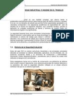 Libro de Seguridad Industrial - Ing Maria Del Carmen