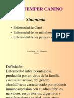 ETT - Moquillo