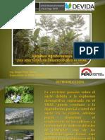 Sistemas agroforestales