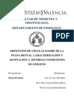 Tesis OBTENCIÓN DE CÉLULAS MADRE DE LA PULPA DENTAL.pdf
