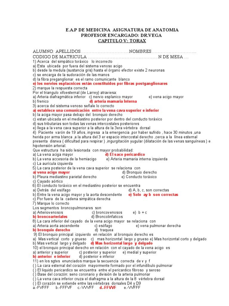 Lujoso Anatomía Y Fisiología Del Examen 1 Con Respuestas Imágenes ...
