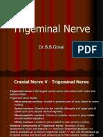 Trigeminalnerve Dr 130815021601 Phpapp02