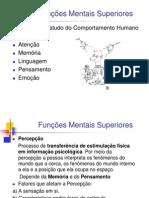 funcoes_mentais_superiores