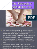 anatomafisiologaypatologasdelospies-120510044831-phpapp01