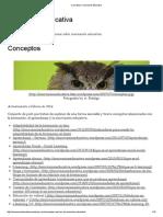 Conceptos _ Innovación Educativa.pdf