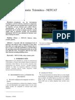 Lab2_Netcatxxx.pdf