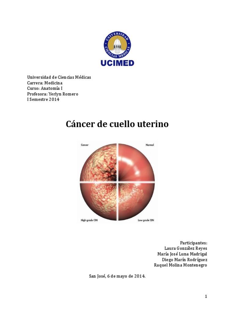 Famoso La Anatomía Del Cuello Uterino Motivo - Imágenes de Anatomía ...