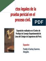 Aspectos Legales Pericial Proceso Civil