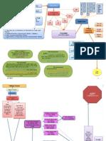 14th Amendment Flow Chart
